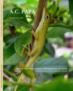 Ancient City Poets, Authors, Photographers, & Artists Journal